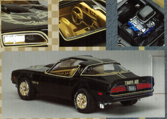 Amazoncom 1978 Pontiac Trans Am Decals amp Stripes Kits