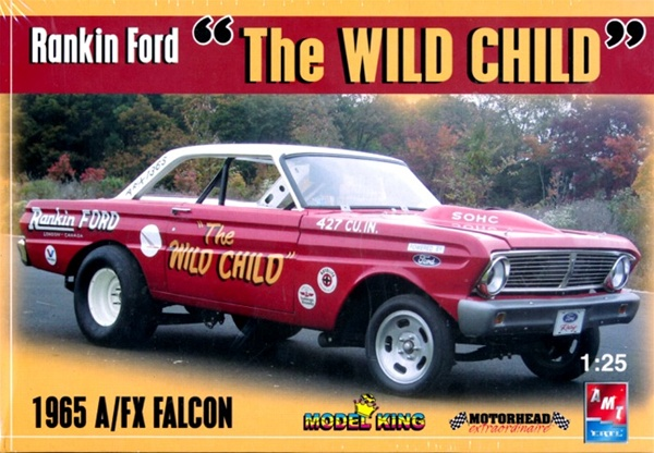 Image result for amt wild child falcon